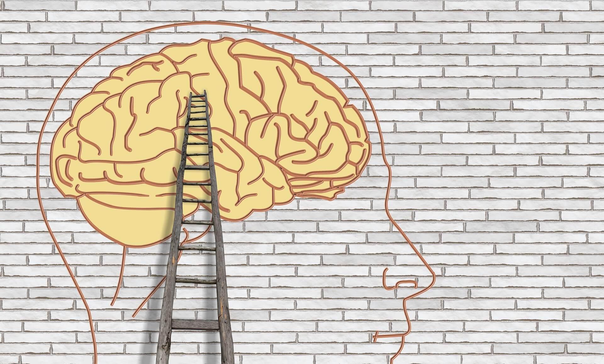 creier-schimbare-tipare-obiceiuri-resetare
