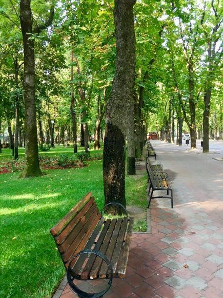 Parc de toamna