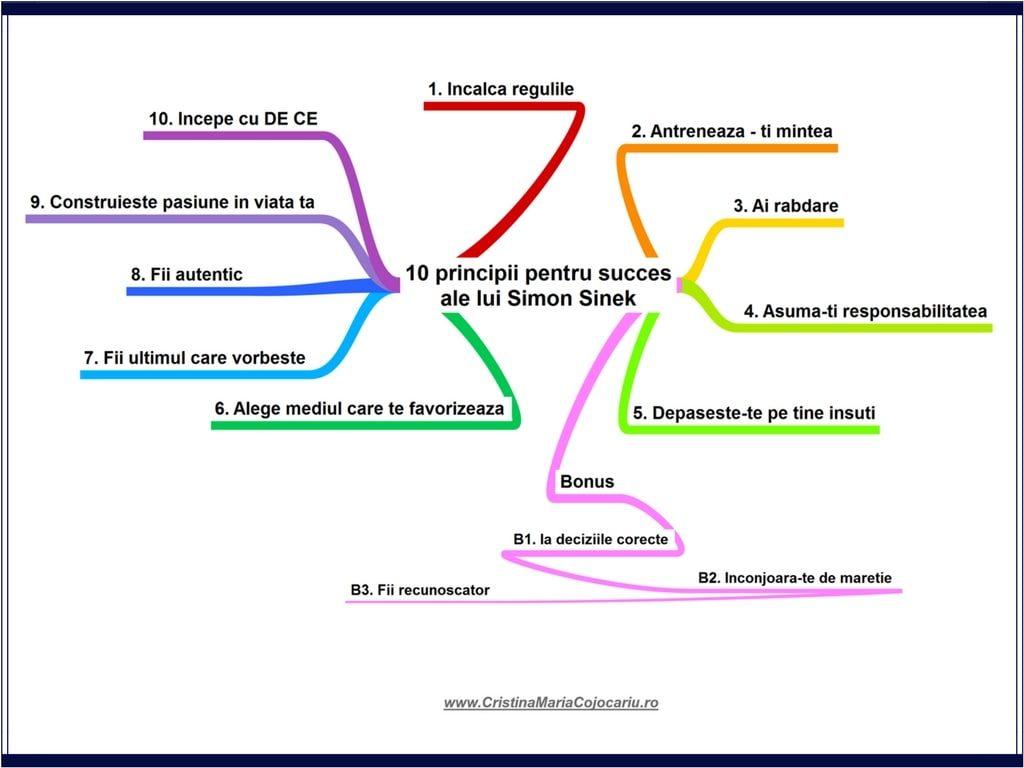 [Top 10] Simon Sinek – 10 principii pentru succes + 3 idei bonus (II)